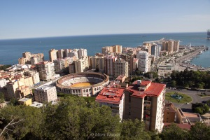 View of Malaga with the bullfighting ring
