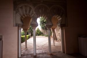 Alcazaba of Malaga